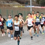 vallagarina cross_380