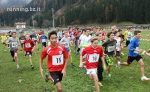 cross ms sarntal_122