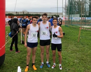 Cross-Team 01.12.19